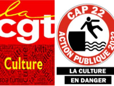Question au Sénat à la ministre de la Culture : Services du ministère de la Culture