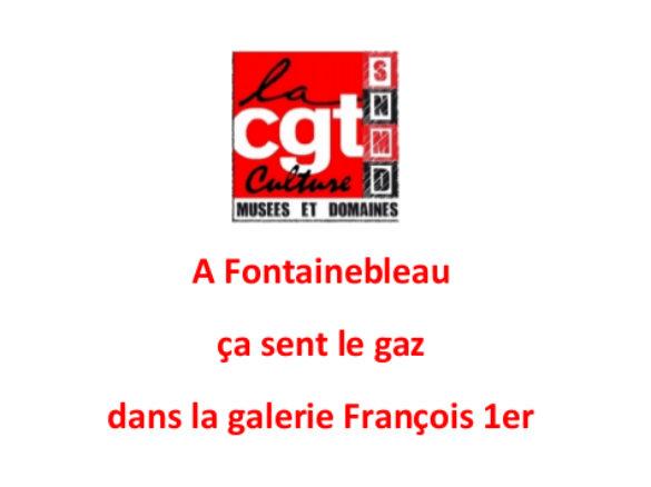 A Fontainebleau ça sent le gaz dans la galerie François 1er