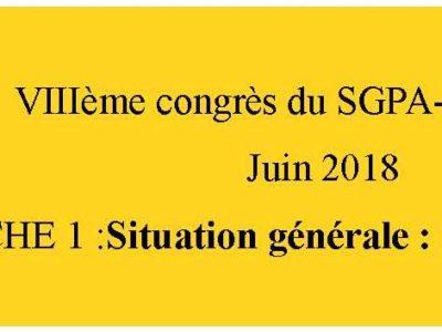 document d'orientation sgpa-cgt: fiche 1 La situation générale