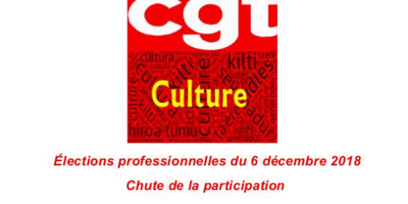 Élections professionnelles du 6 décembre 2018 : Chute de la participation et la CGT reste 1ère organisation syndicale du ministère de la Culture