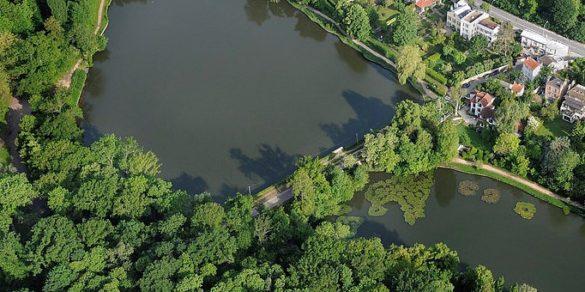 Les étangs de Corot:  un patrimoine végétal en danger