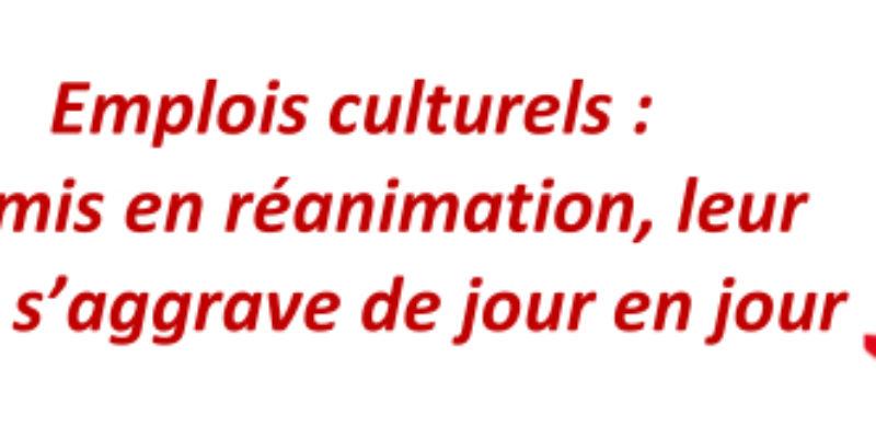Emplois culturels : Admis en réanimation, leur état s'aggrave de jour en jour